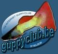 Guppyclub Belgium